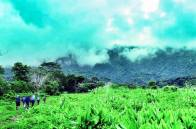 Sneak Peak of Mt Isarog